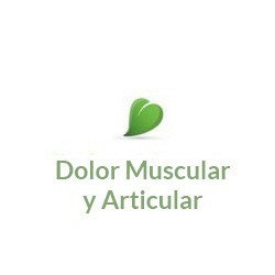 Dolor Muscular y Articular
